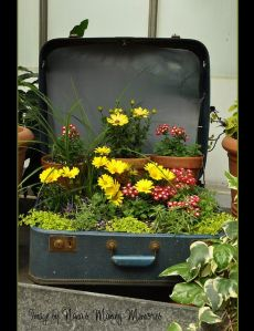 Nanas Making Memories - Suitcase Planter