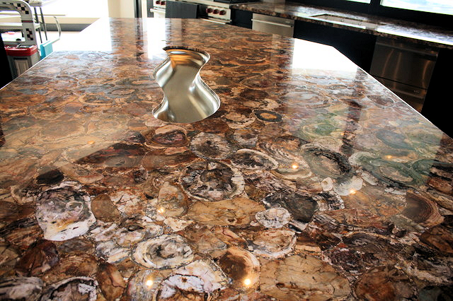 African Petrified Wood Countertop