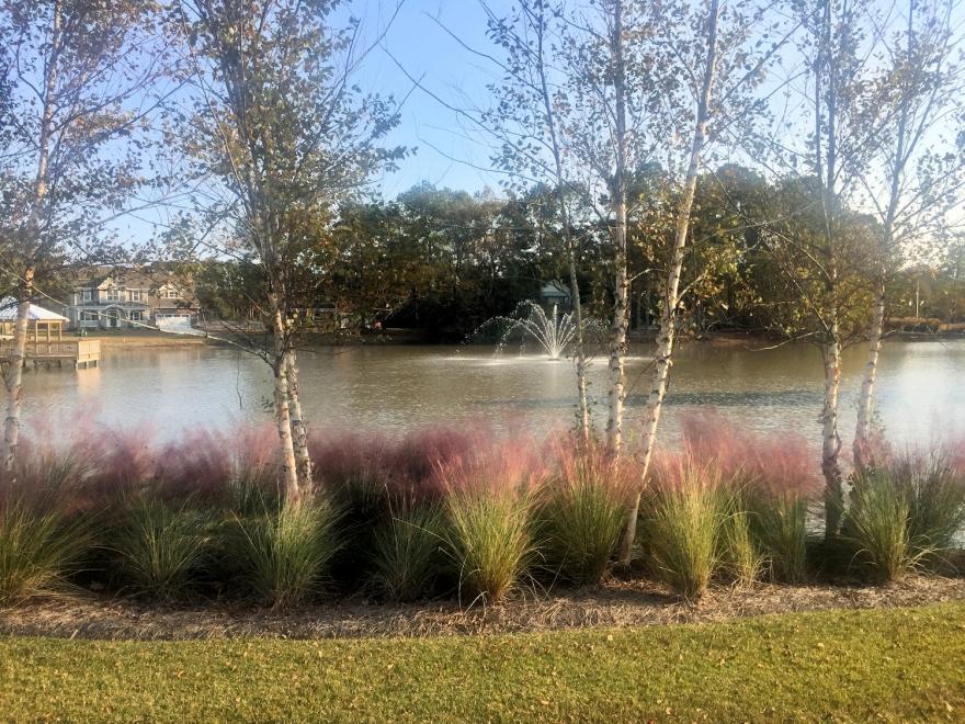WyndWater Lake and Grass